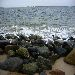 rocks_sand_surf